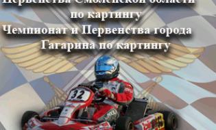 Чемпионат и Первенства города Гагарина по картингу